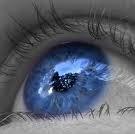 yeux.jpg