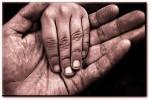 donner mains.jpg