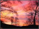 ciel-avant-le-leve-du-soleil.jpg