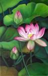 lotus10.jpg