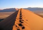 desert chemin.jpg