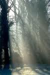 lumière.jpg