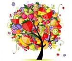 arbre_aavec_tous_les_fruits.jpg