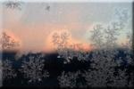 2016-12-15-le-froid-pennible-de-l'hiver.jpg